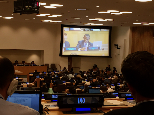 UN ,eating plenary, New York